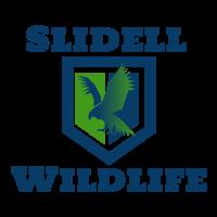 Saint Tammany Parish Wildlife Removal